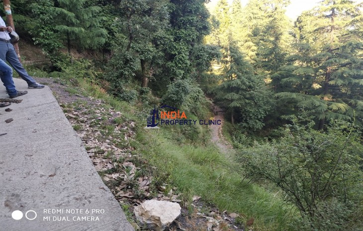 11 Kanal Land for Sale Dharamkot