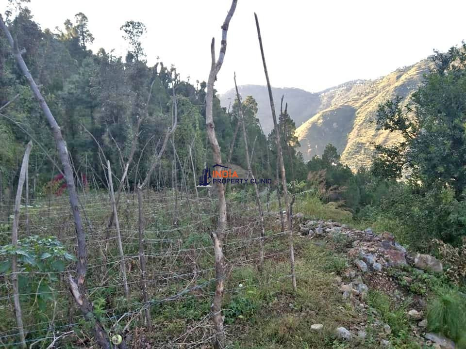 Plot for Sale at Near Chail Kandaghat