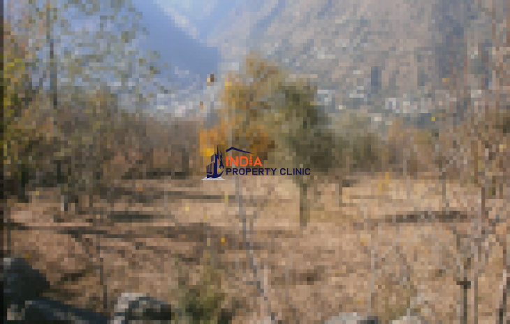 30 Biswa Agricultural Land for sale | India Property Clinic