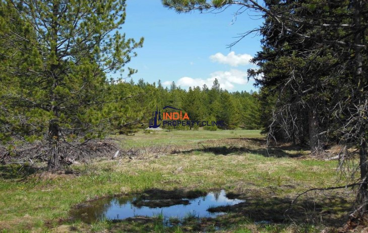 Land For Sale in TBD Hwy