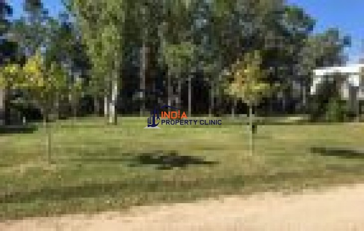 Building Land for sale in Pando