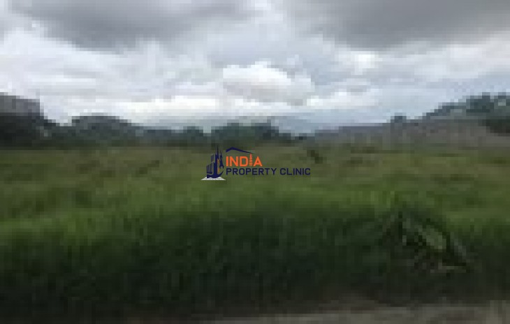 Agricultural Land for Sale in Cartago
