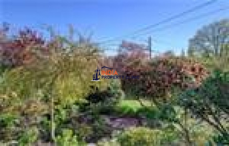 Residential House For Sale in St. Ann