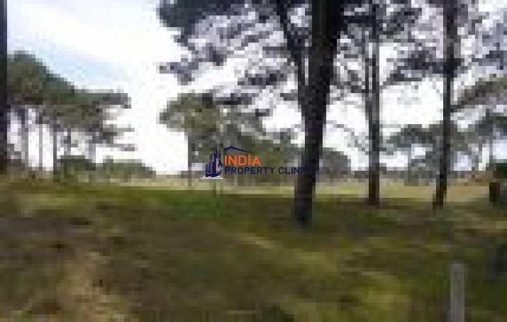 Construction Building Land for sale in Punta Ballena