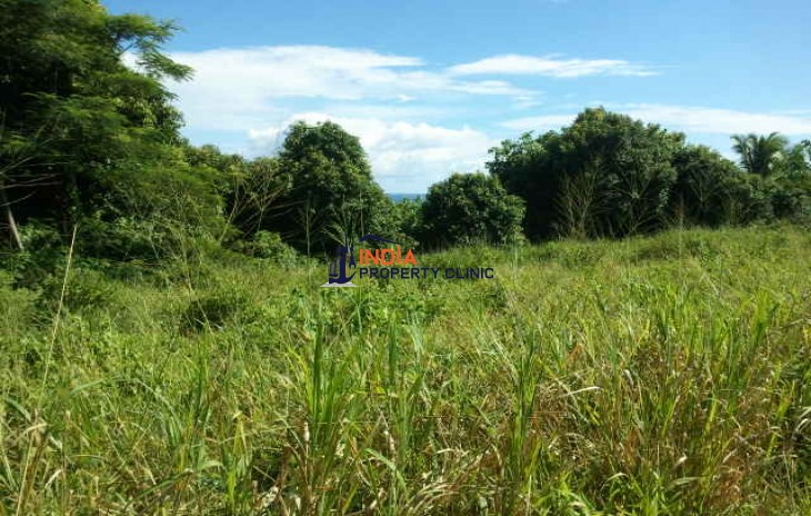 Land For Sale in Amuri