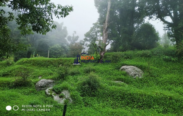 9 Kanal Land For Sale Darmkot near Dharamshala
