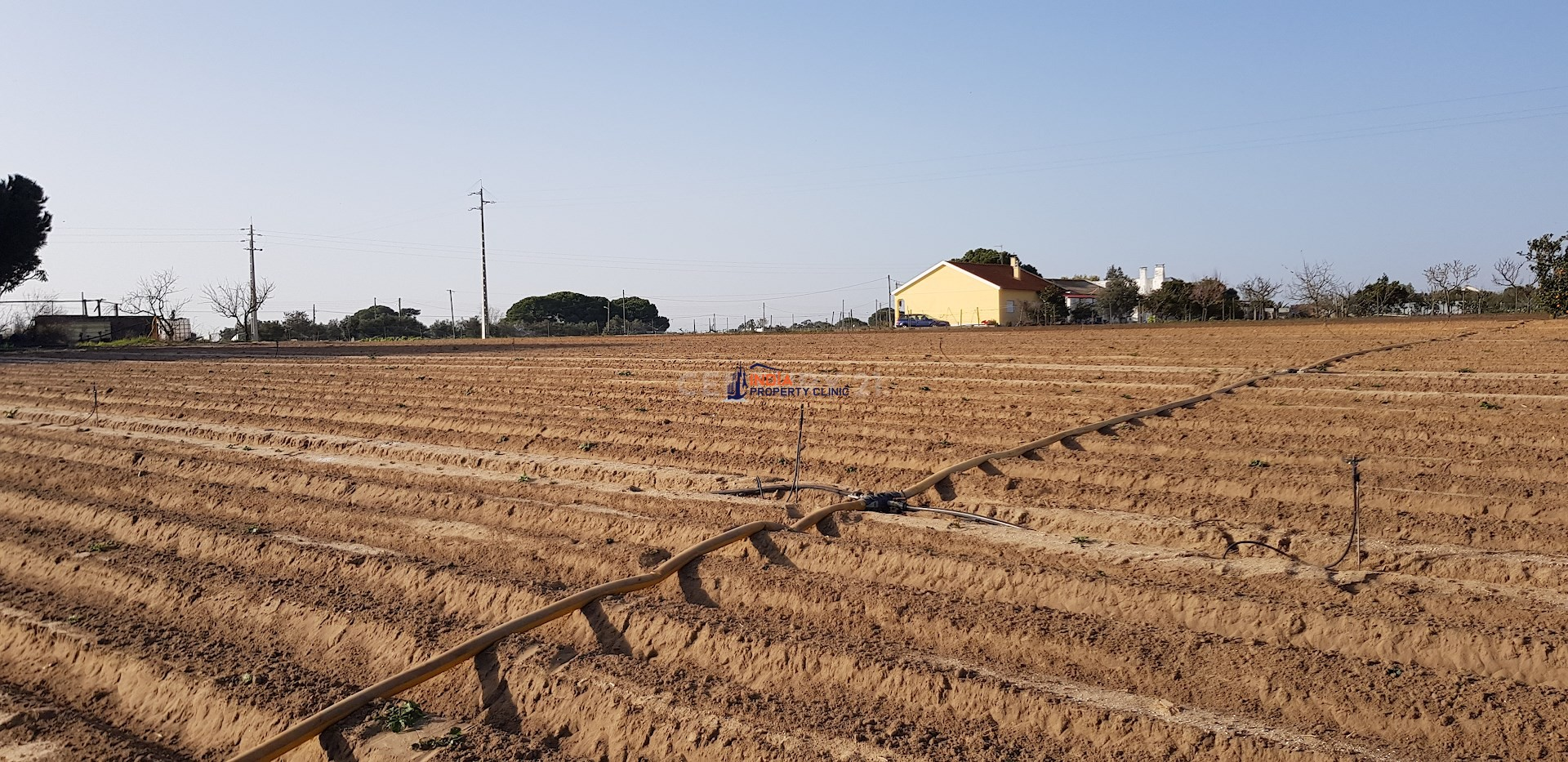 Farm Land For Sale in Benavente