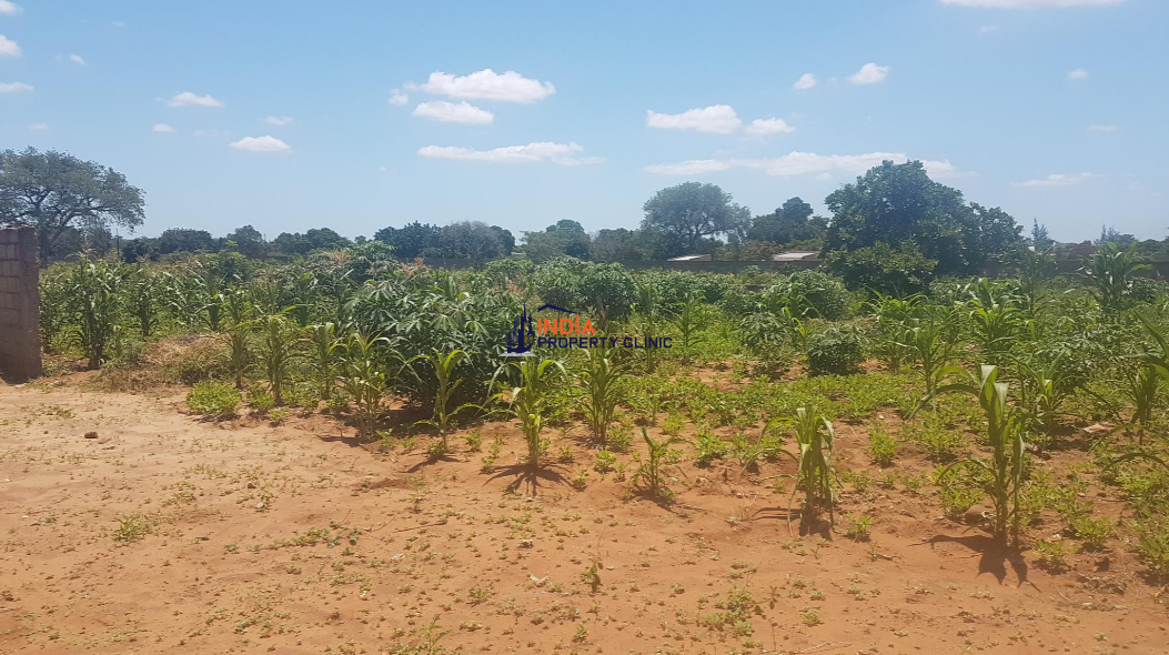 3 hectare Vacant Land For Sale  in Matola
