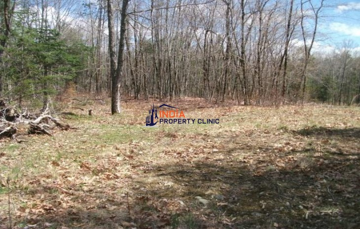 Land For Sale in Bucksport