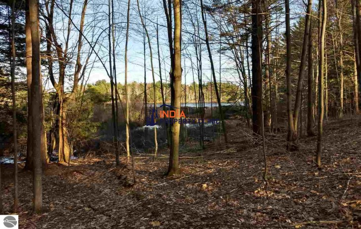 .74 acre Vacant Land For Sale in Lake Ann