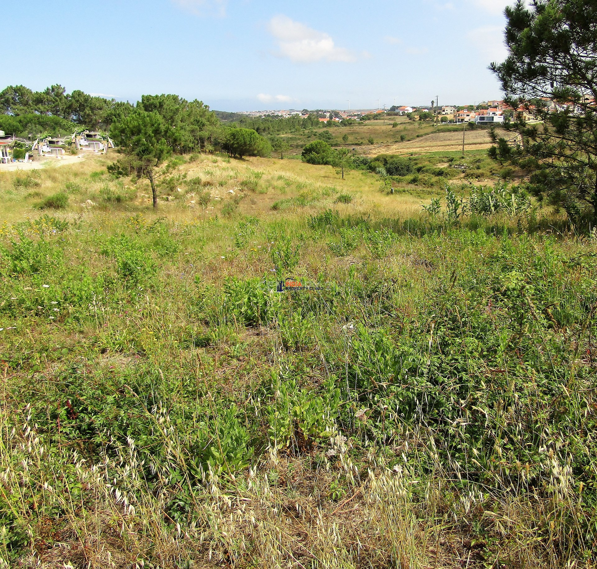 Farm Land For Sale in Mafra