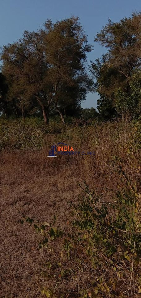 Land for sale in Panchkula near Chandigarh
