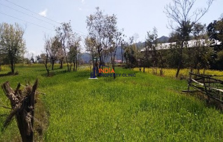 Agriculture Land for SALE in Panchrukhi