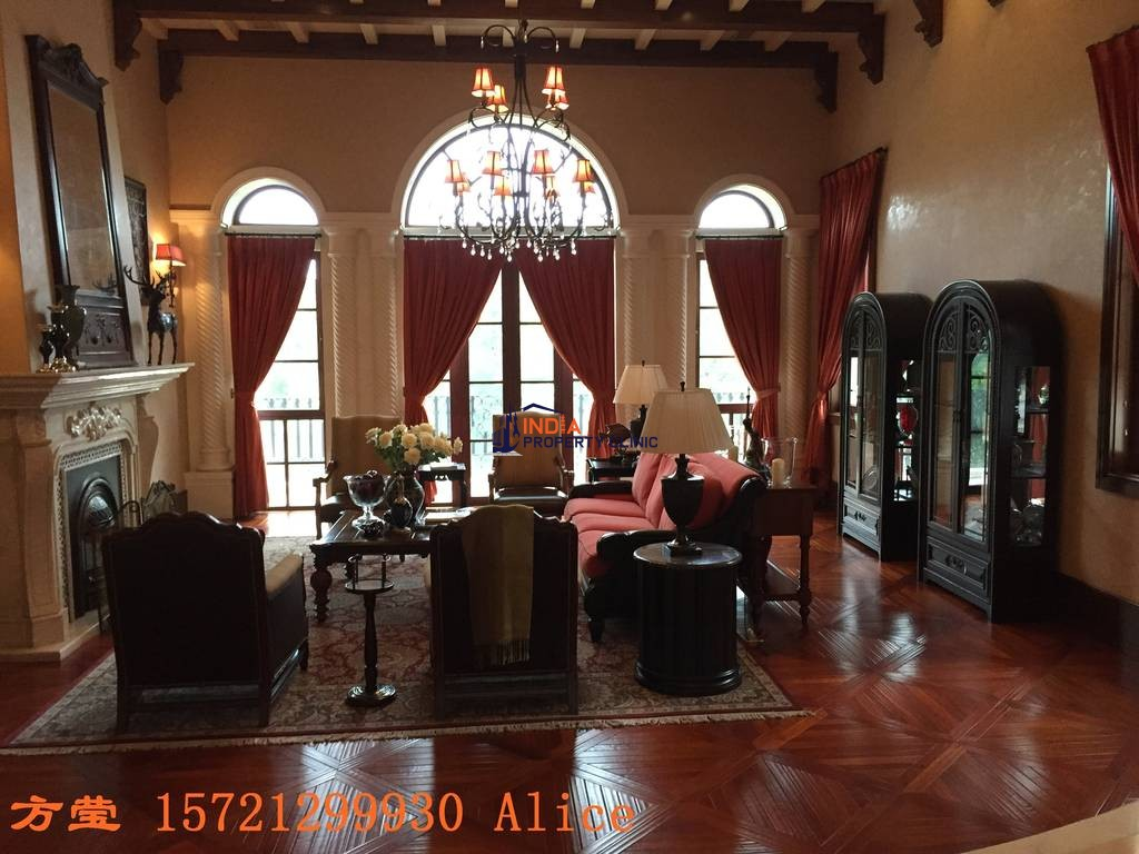 Castle for sale in Shanghai Shi