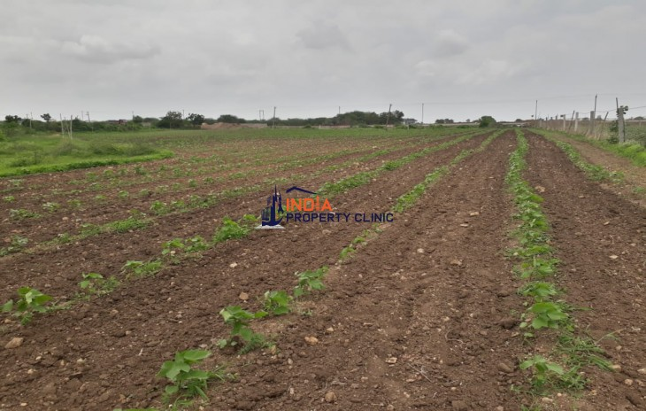 2 Acre Land For Sale in Gujarat