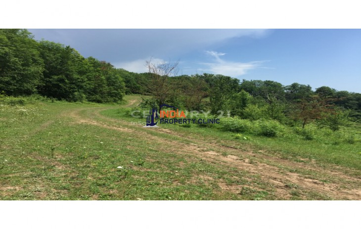 Land For Sale in Sochi