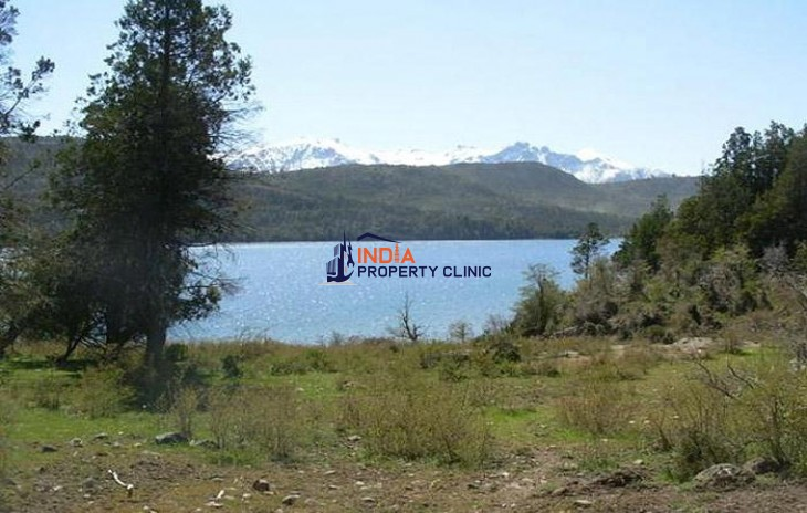 Land For Sale in Cholila
