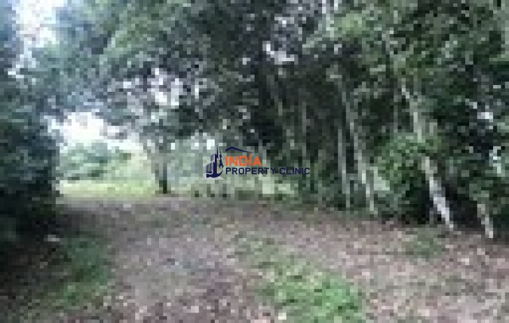 Property for Sale in Turrialba