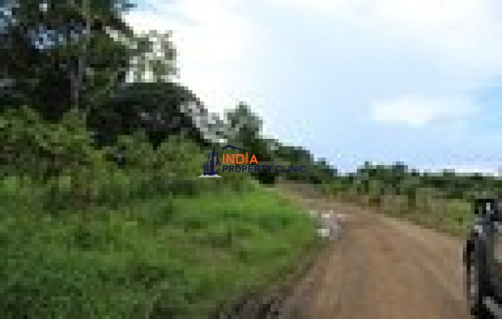 Agricultural Land for Sale in Puntarenas