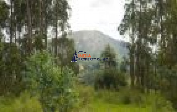 Undeveloped Building Land for sale in  Playa Hermosa