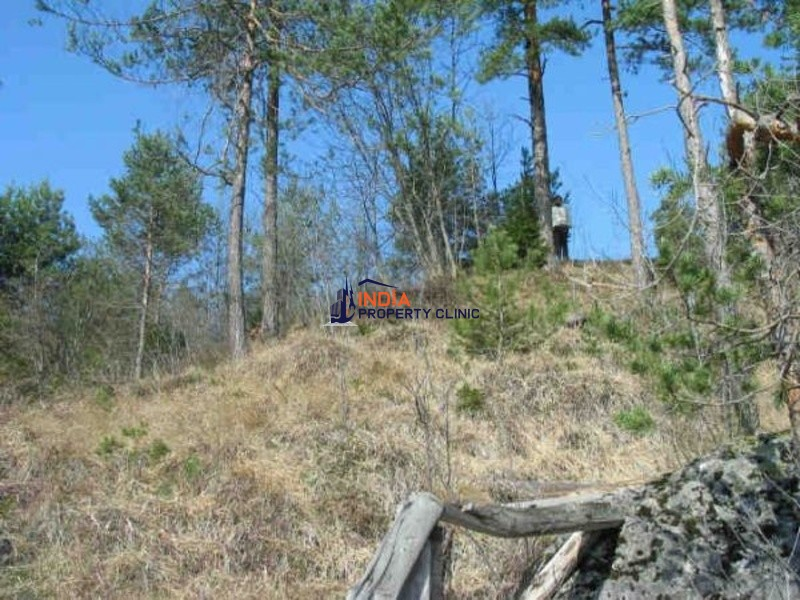 Land For Sale in Bled