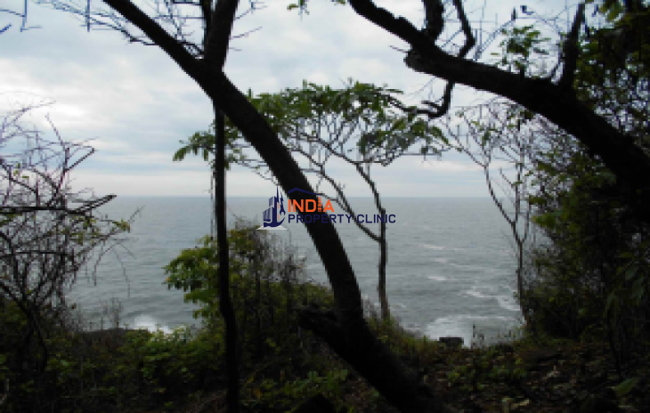 Land For Sale in Cliff Surf Zone
