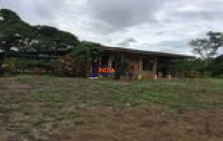 Agricultural Land for Sale in Mansion