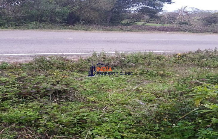 6.5 Marla Plot for sale Dhawala Jawalaji.