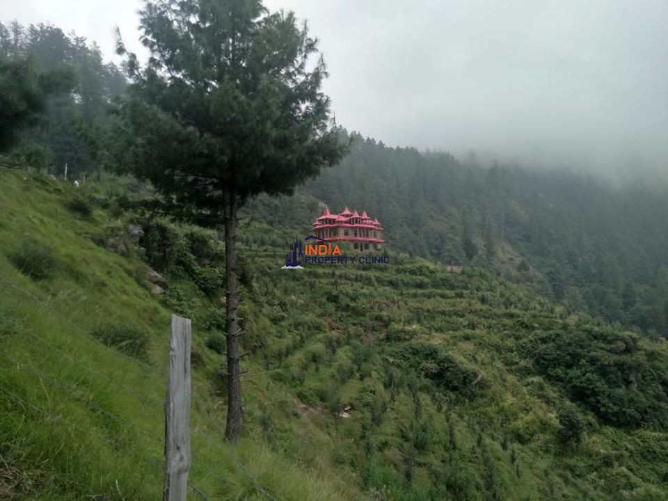 52 Bigha Orchard For Sale Chansal Valley Shimla
