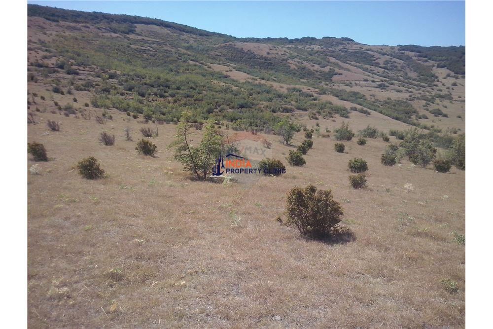 Land For Sale in Tbilisi