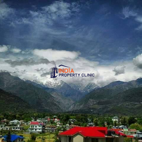 1.5 Kanal Plot for SALE in Bandla Palampur