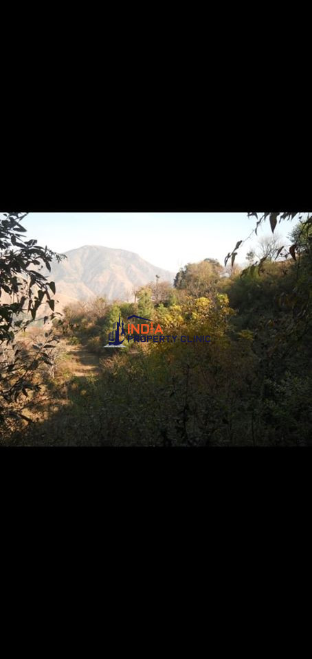 5 Bigha Land For Sale Chail