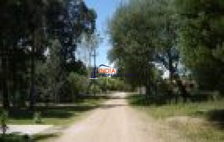 Undeveloped Building Land for sale in Balneario Solís