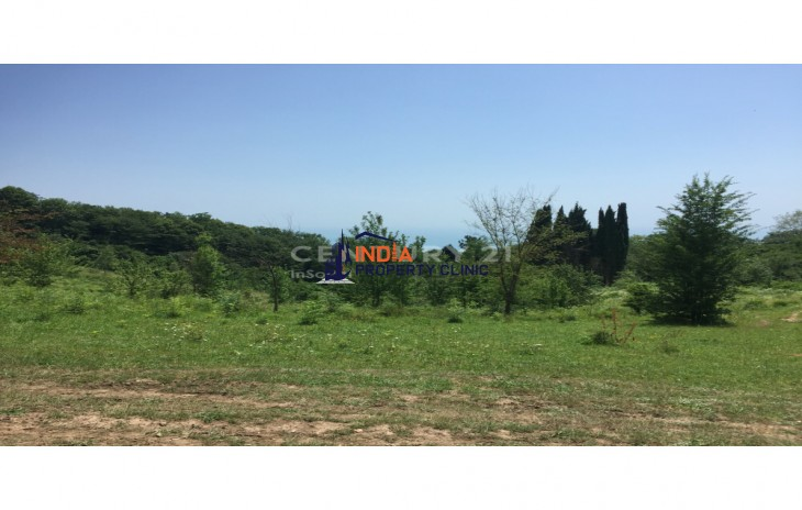 Land For Sale in Light Street Sochi