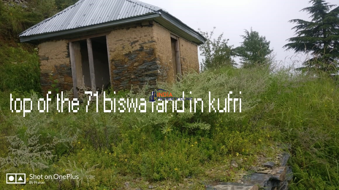 3.55 Bigha Land for Sale in Gallu Kufri