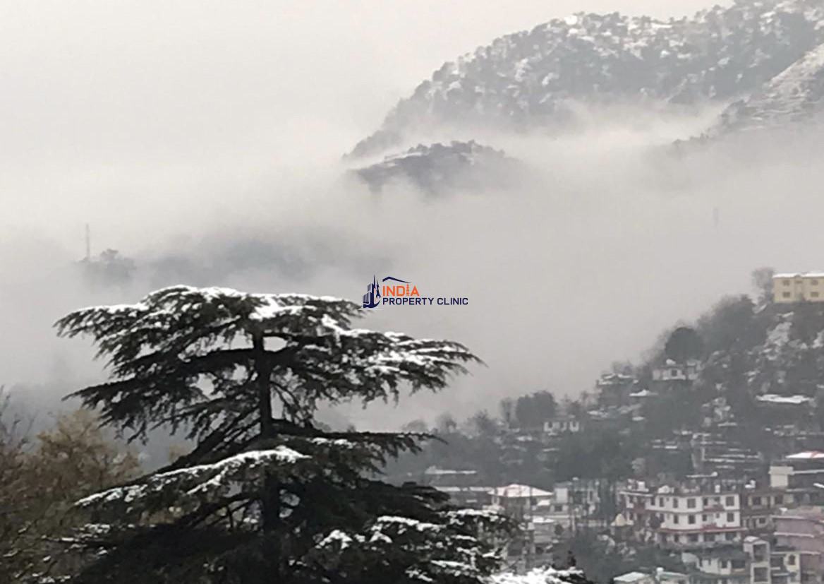 1BHK Flat for sale in Mohali