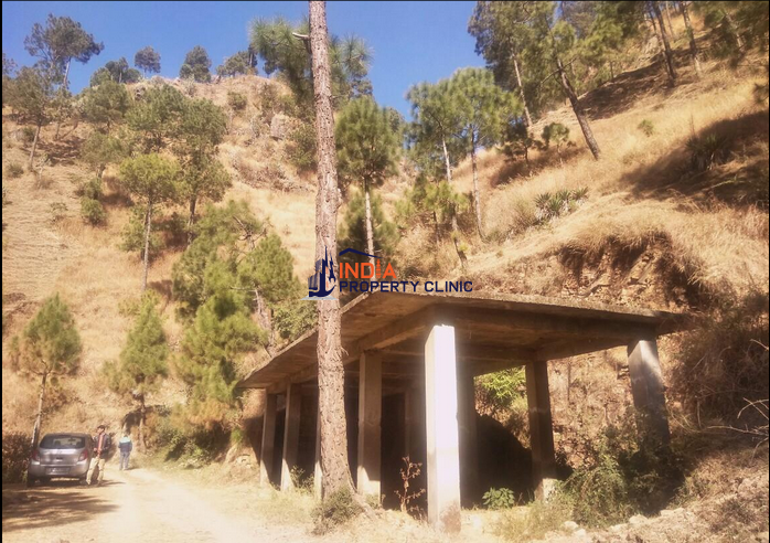23 Biswa Land For Sale IN Shoghi