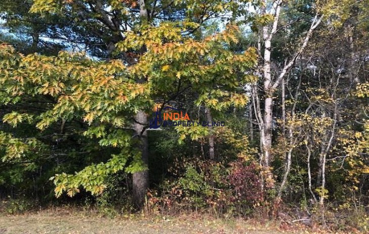 Land For Sale in Passadumkeag