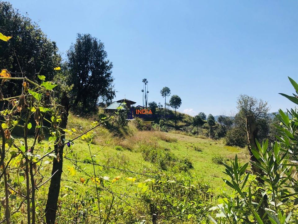 54 Biswa Plot For Sale at Near Beolia Shimla