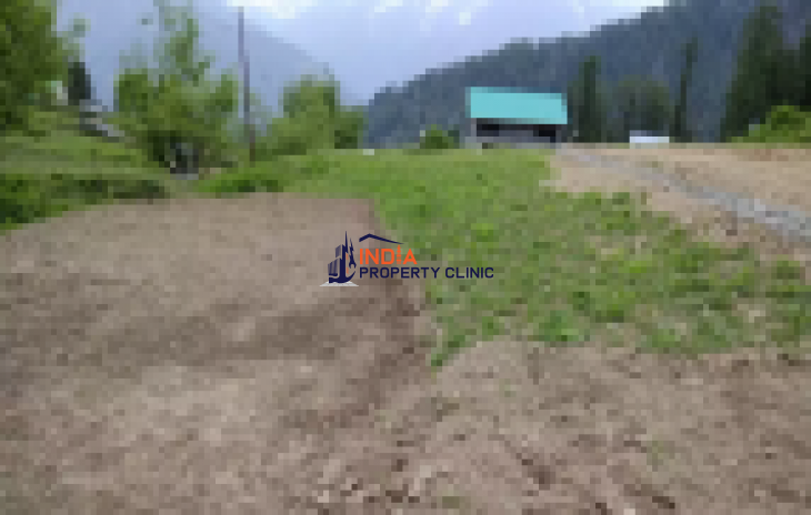One Bigha land near Hamta village | India Property Clinic | IPC