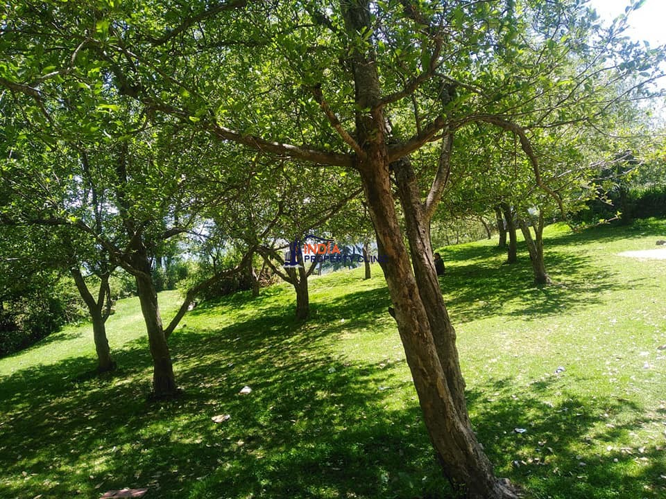 Land for sale at Mashobra