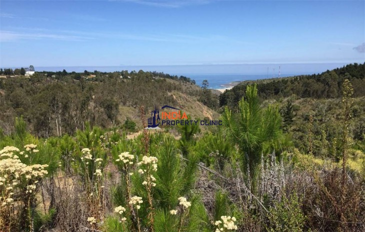 Residential Plot For Sale  in Algarrobo