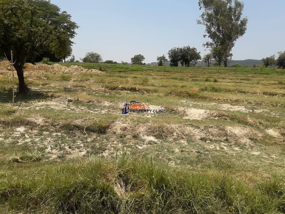 3 Kanal Land for SALE near Dharamshala