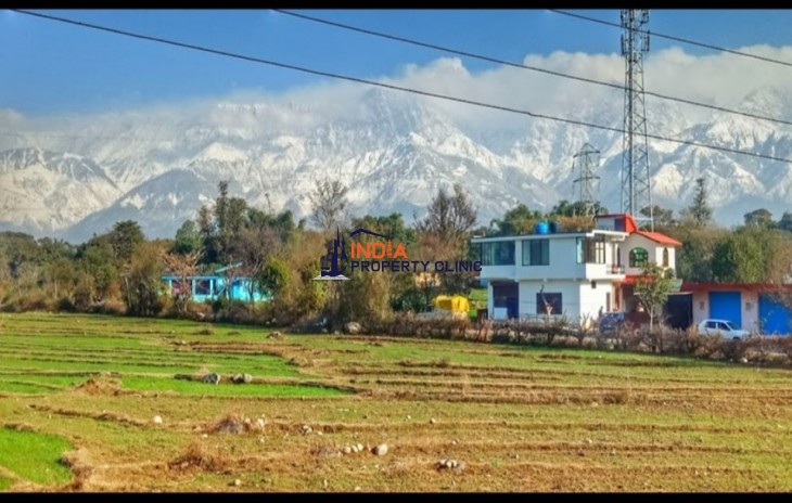 28 Marla Plot for sale Nagrota Bagwan Kangra