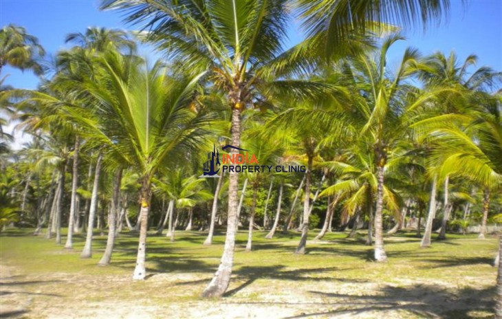 Land For Sale in Santa cruz
