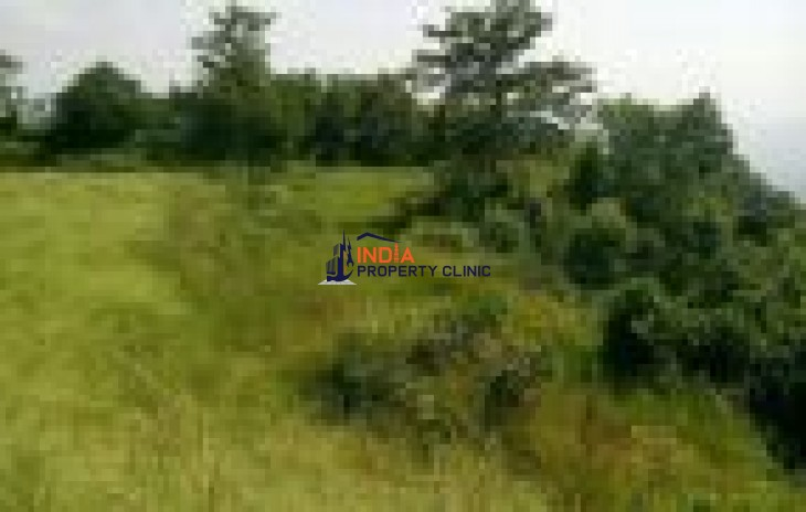 Agriculture Land for sale in shimla