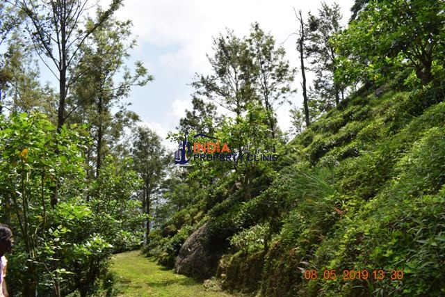 Land For Sale in Beragala