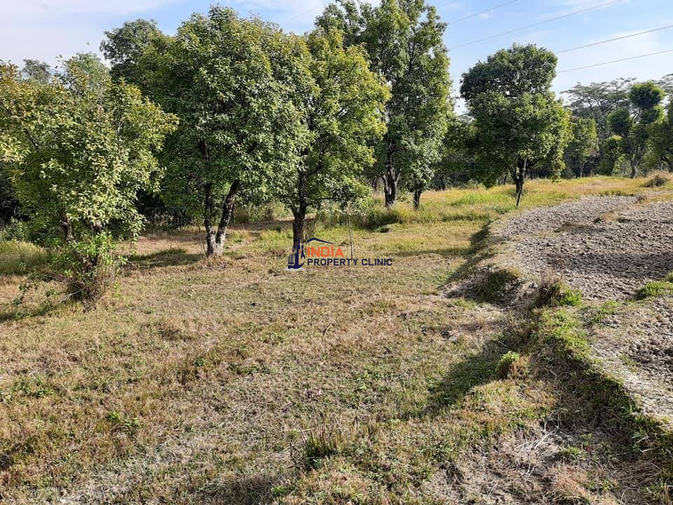 10 Kanal Land for SALE  Near 78 Miles Palampur