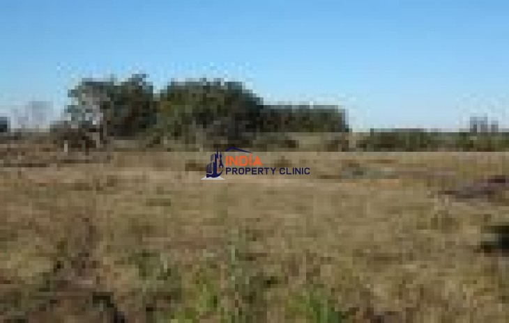 Undeveloped Building Land for sale in Punta Ballena