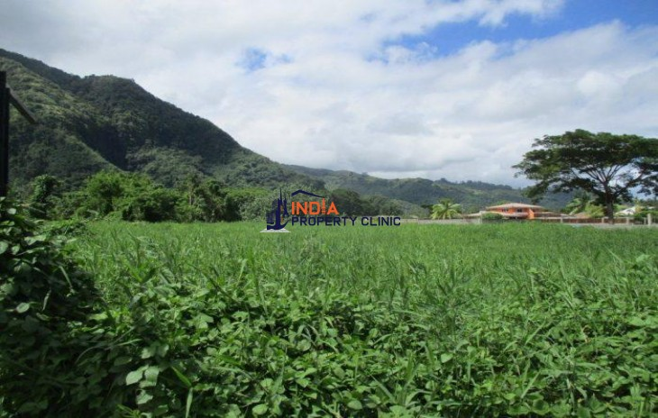 Land For Sale in Papao
